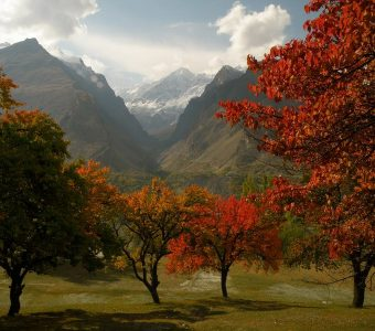 Autumn in Hunza Valley- A spectrum of gold hues