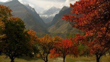 autumn-in-hunza-valley-a-spectrum-of-gold-hues