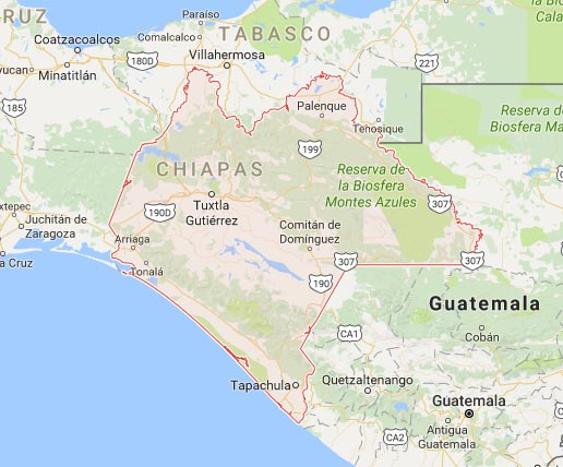 Bus plunges 90m off Mexican roadside, killing at least 12